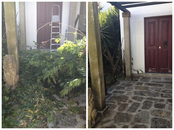Before and after trimming the vegetation by the back door