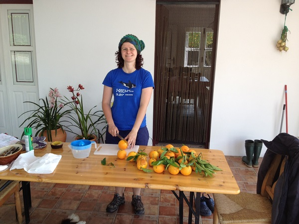 Laura cutting oranges in half for squeezing