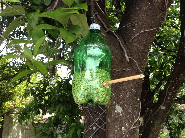 A homemade bird feeder made out of a plastic bottle